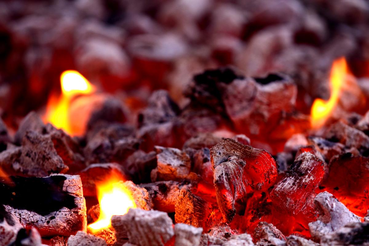 C mo lograr una barbacoa perfecta las brasas blog de for Pesadilla en la cocina brasas