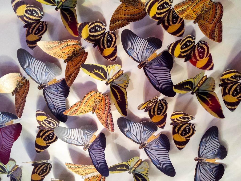Las famosas mariposas en la entrada de DiverXO