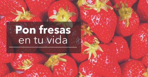 Recetario con fresas para todo tipo de recetas dulces y saladas