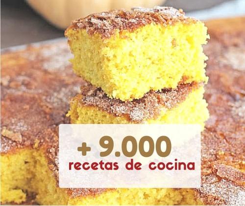 9000-recetas-de-cocina